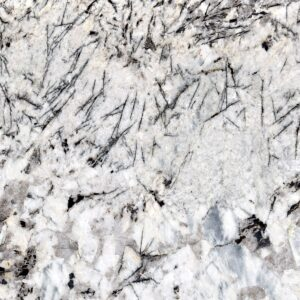 Alaska white-min